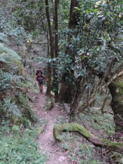 Amatola Hiking Trail