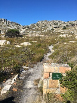 Path leading up Kalkbay Mountain