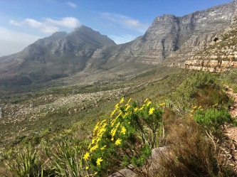 Table Mountain from a different angle