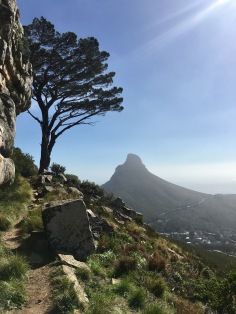 Contour path to Kloof Nek Corner