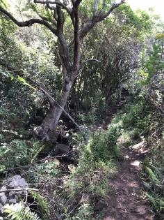Baviaanskloof Hike