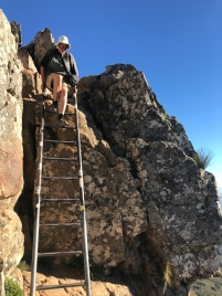 Top ladders on Lions Head