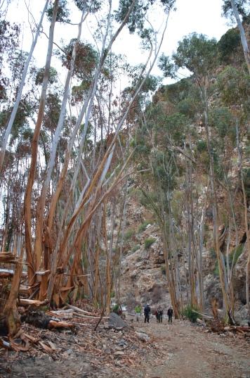 Bloupunt Hiking Trail