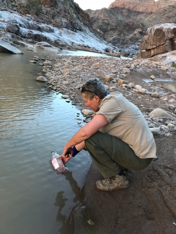 Drinking water in the Fish River Canyon