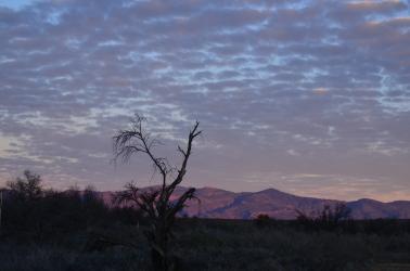 Tankwa Karoo Sunrise