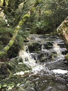 Disa River Gorge