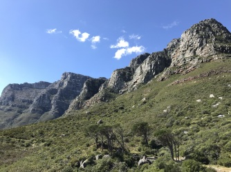 View of Table Mountain along Pipe Line Track