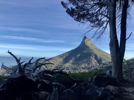 Lions Head from the Pipe Line Track